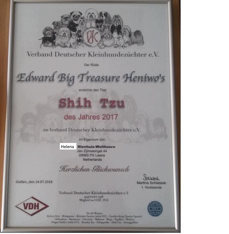 Edward award 2017 vk shih tzu van het jaar.